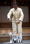 946: The Amazing Story of Adolphus Tips <br /> directed by Emma Rice at The Globe Theatre, London, Great Britain <br /> press photocall <br /> 16th August 2016 <br /> <br /> <br /> <br /> Nandi Bhebhe as Tips The Cat <br /> <br /> E<br /> <br /> <br /> <br /> Photograph by Elliott Franks <br /> Image licensed to Elliott Franks Photography Services