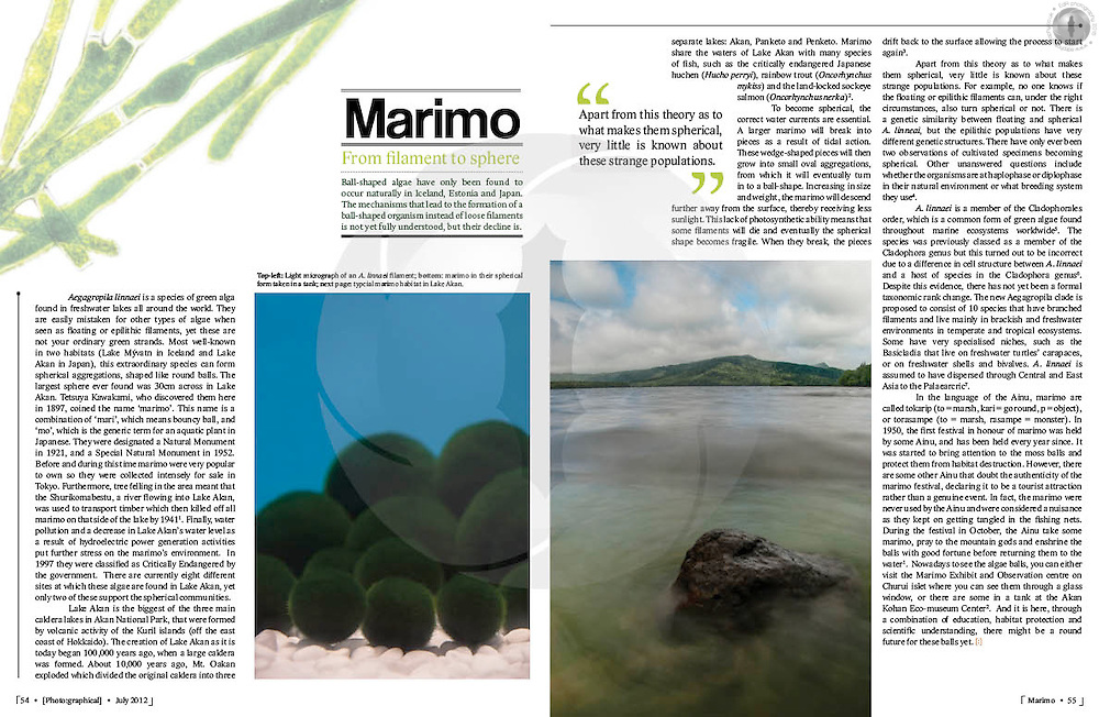 Double-page spread on an article about Marimo algae (Aegagropila linnaei) in Akan National Park in eastern Hokkaido, Japan. Graphics, text, photography and design my own.