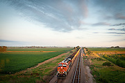 A coal train passes through a cornfield at dawn outside of York, Nebraska.