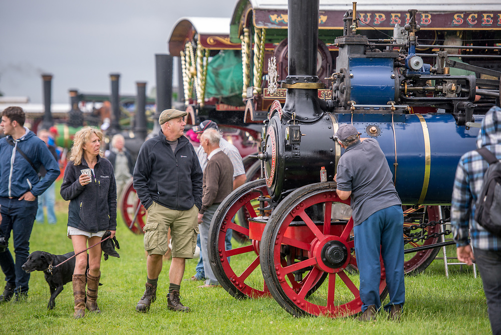 People walk around and admire collection of steam engine tractors, Masham, North Yorkshire, UK