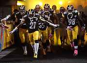 The Pittsburgh Steelers run onto the field with a cloud of yellow smoke and lights in the background before the NFL week 7 regular season football game against the Houston Texans on Monday, Oct. 20, 2014 in Pittsburgh. The Steelers won the game 30-23. ©Paul Anthony Spinelli