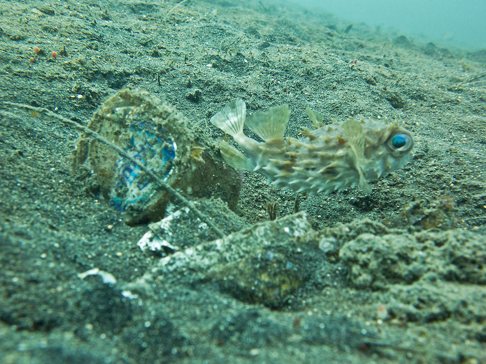 Plastic pollution in North Sulawesi, Indonesia 2014.<br />