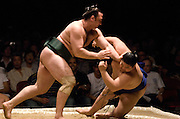Kotooshu (green mawashi) pushes out  Futeno in the second round of Day 1 of Grand Sumo Tournament Los Angeles 2008, Los Angeles Sports Arena, Los Angeles, California