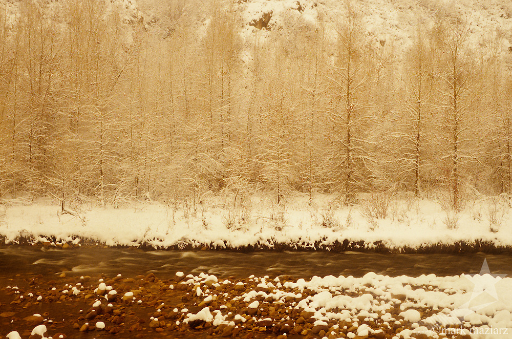 snowy day on Provo River near Francis, UT USA
