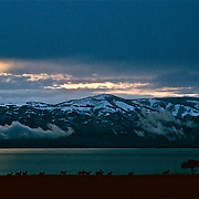 Mule Deer, Bear Lake Utah