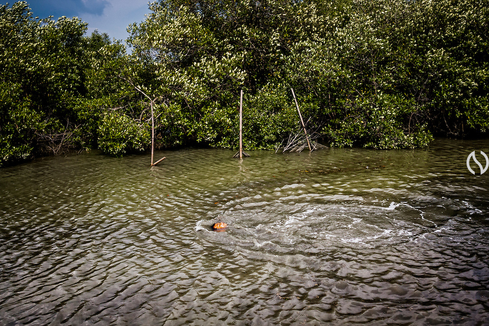 A boy swims in the flooded yard.