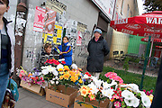 Fresh flowers at the Balucki Rynek market.  Lodz   Central Poland