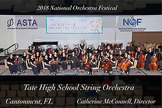 Tate High School String Orchestra