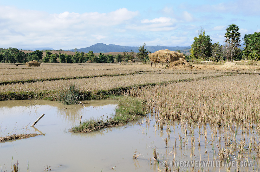 Rice paddies on the way to Site 3 of the Plain of Jars in Laos.