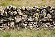 Drystone wall near St John's Town of Dalry, Southern Uplands, Scotland