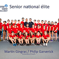 Senior national élite