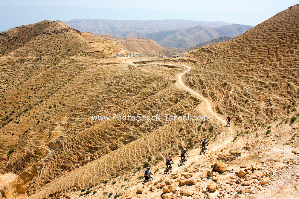 A group of bicycle riders in the Arava desert Israel