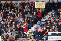 KELOWNA, CANADA - FEBRUARY 10: Game host Brian Mac stands in the crowd for a BCAA time out promotion on February 10, 2017 at Prospera Place in Kelowna, British Columbia, Canada.  (Photo by Marissa Baecker/Shoot the Breeze)  *** Local Caption ***