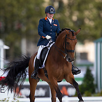 Para Dressage Individual Freestyle Grade III
