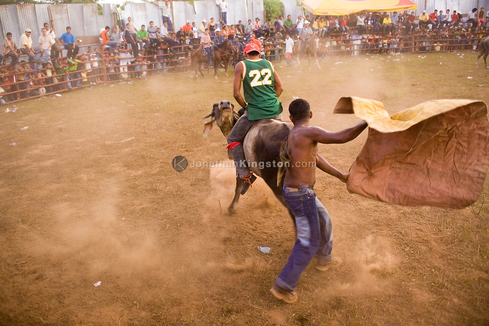 An audience member rides an angry bull while another tempts it with a cape at a Nicaraguan bullfight in Somotillo, Nicaragua. Bullfighting in Nicaragua is popular, especially during a town's annual celebration week honoring its patron saint. Nicaraguan bullfighting is a hybrid of rodeo and bull fighting, and in areas like Somotillo, audience members are often the participants.