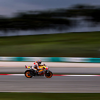 Spanish MotoGP rider Marc Marquez of Repsol Honda Team speeds during the qualifying session of the 2014 Malaysian Motorcycling Grand Prix in Sepang International Circuit near Kuala Lumpur, Malaysia, 25 October 2014. The Malaysian Motorcycling Grand Prix will take place from 24 to 26 October 2014.
