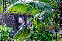 Bali, Gianyar, Gunung Kawi. An 11th century temple complex close to Tampaksiring. The western part of Gunung Kawi can be seen through the palm branches.