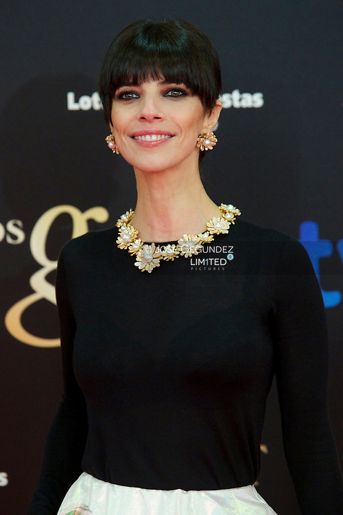 Maribel Verdu arrives to Goya Cinema Awards 2013 ceremony, at Auditorium Hotel on February 17, 2013 in Madrid, Spain