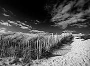 Beach Fence - Devon, England