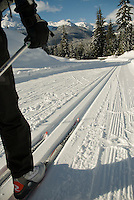 Skier Brian Smith enjoys the trails at Whistler Olympic Park, near Whistler, BC Canada