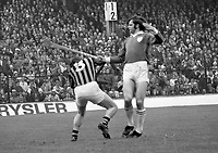 1973 All-ireland senior hurling final. Limerick v Kilkenny.<br /> (Part of the Independent Newspapers Ireland/NLI collection.)