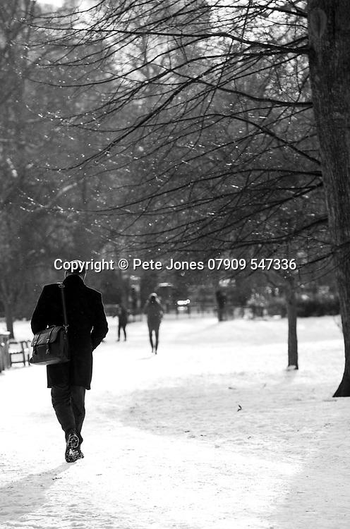 Snow images;<br /> London Views;<br /> One Birdcage Walk, SW1E 6HQ;<br /> 28th February 2018.<br /> <br /> &copy; Pete Jones<br /> pete@pjproductions.co.uk