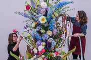 Final touches to a display on Gail Smith Flowers - Press preview day at The RHS Chelsea Flower Show.