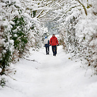 Richmond - England Walking in the snow on 8th January The snow which crippled South East England this morning will stay with the UK for the rest of the week, forecasters warn,...***Standard Licence  Fee's Apply To All Image Use***.Marco Secchi. tel +44 (0) 845 050 6211. e-mail ms@msecchi.com .www.marcosecchi.com