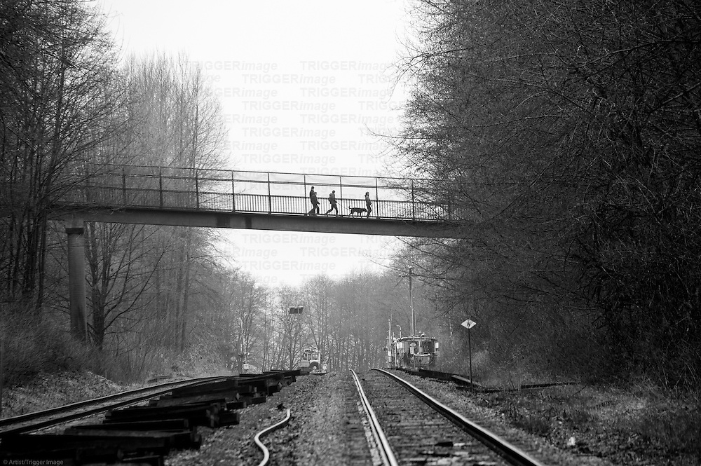 People and their dog walking across an overpass, crossing train tracks and forest.