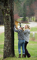 Caitlin Meaney and Lauren Kane hang bird houses throughout the camping areas at Gunstock Resort during Laconia Rotary's volunteer service project on Saturday.  (Karen Bobotas/for the Laconia Daily Sun)