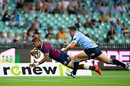 SYDNEY, NSW - MARCH 09: Reds player Chris Feauai-Sautia (14) dives to score a try at round 4 of Super Rugby between NSW Waratahs and Queensland Reds on March 09, 2019 at The Sydney Cricket Ground, NSW. (Photo by Speed Media/Icon Sportswire)