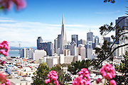 San Francisco Skyline Photos