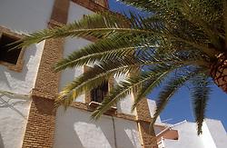 Palm tree and 'Hand of St Teresa' chapel at Ronda; Andalucia,