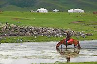 Mongolie, Province de Ovorkhangai, Vallee de l'Orkhon, campement nomade et cavalier // Mongolia, Ovorkhangai province, Okhon valley, Nomad camp and horseman