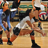 JV Lady Eagles Volleyball