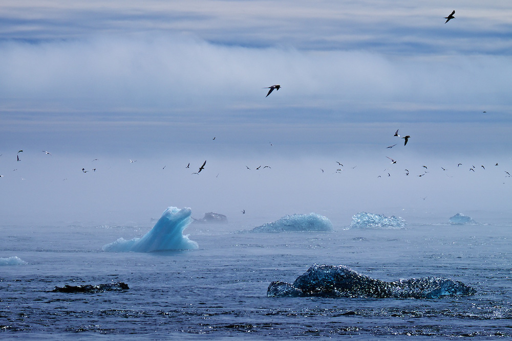 Iceland, 2014, National Geographic Student Expedition trip
