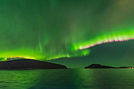 The Northern Lights exhibiting the classic pink colour on the lower edge of the curtains from glowing nitrogen molecules, in addition to the main green tint from oxygen. <br /> <br /> Taken from the Hurigruten ship the m/s Nordlys north of Troms&oslash; on October 24, 2017. <br /> <br /> This is a single 1-second exposure with the Sigma 14mm Art lens at f/1.8 and Nikon D750 at ISO 6400. Taken as part of a time-lapse sequence.