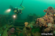 divers explore deck of the wreck known as the Japanese Patrol Boat, a 32 m long trawler-style WW II Japanese vessel, possibly a tugboat or submarine chaser, sunk upright in 18-25m of water in Triboa Bay, within Subic Bay, Philippines, presumed to have been sunk by an Allied air attack in 1944-1945; MR 378, 379