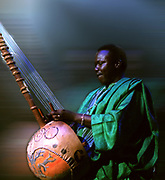 Kouding Cissoko - Kora player
