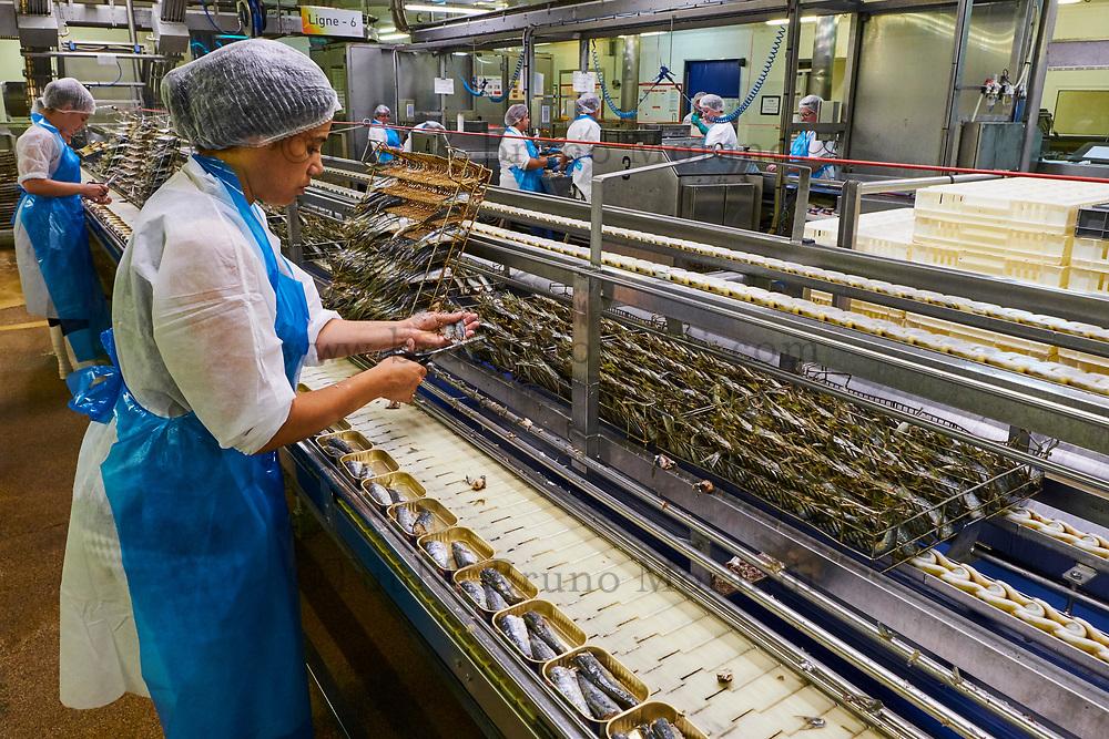 France, Vendée (85), Saint-Gilles-Croix-de-Vie, conserverie Gendreau // France, Vendée, Saint-Gilles-Croix-de-Vie, Gendreau canning factory