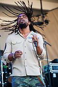 Dwayne Anglin and The Wailers Band at the Taste of Chicago.