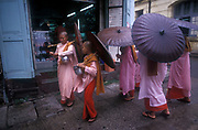 Young nuns collect alms, Yangon