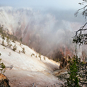 Fog covers the vivid colors of the Grand Canyon of the Yellowstone at sunrise in Yellowstone National Park.