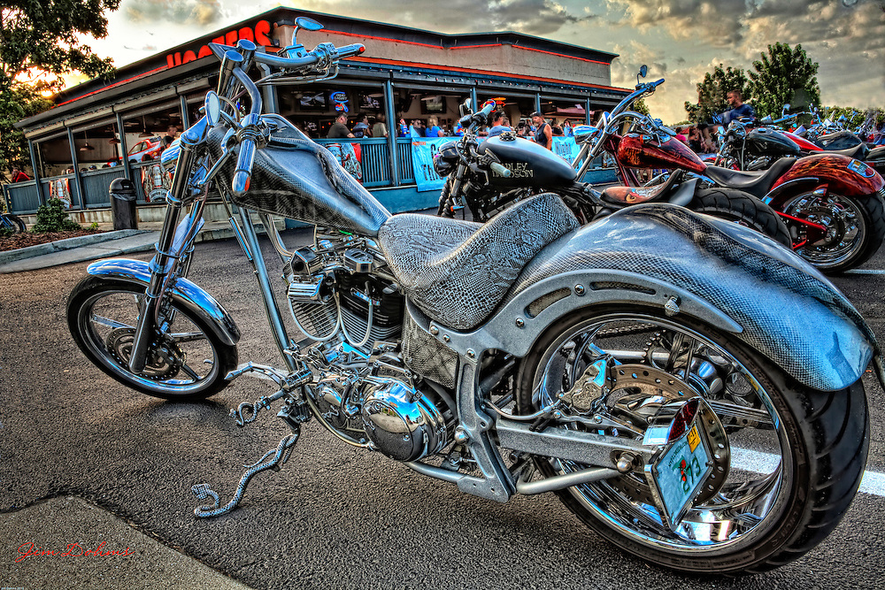 If you are afraid of snakes you may not like this bike. There are snakes everywhere. Check out the kickstand and gas tank.