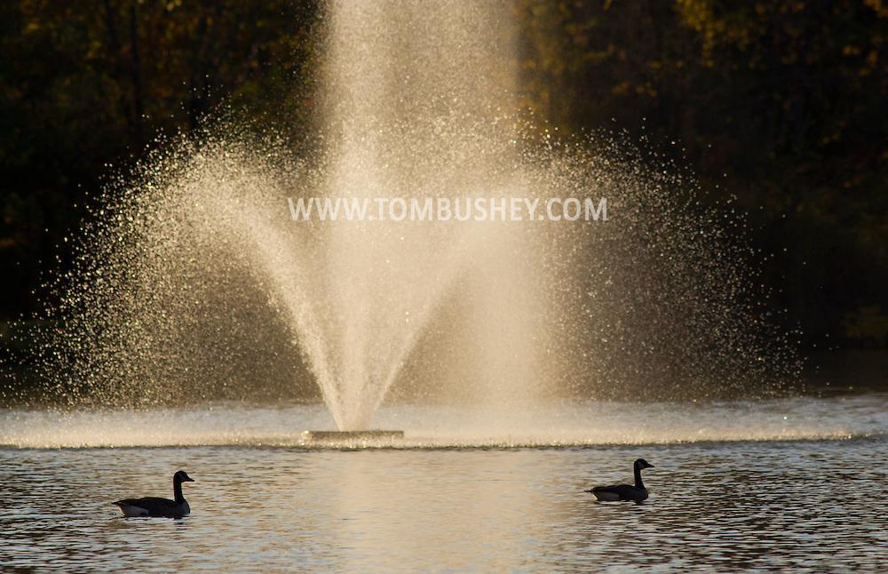 Middletown, New York  - Autumn scenes at Fancher-Davidge Park on  Oct. 16, 2014.