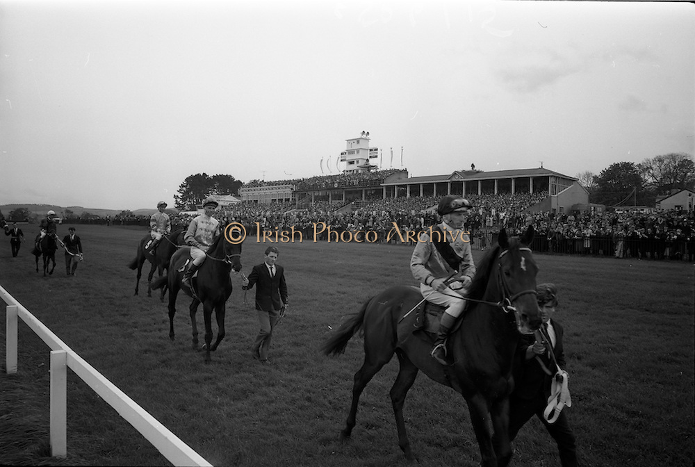 """08/05/1965<br /> 05/08/1965<br /> 08 May 1965<br /> The 1965 Gold Flake Meeting at Leopardstown Racecourse, Co. Dublin. Image shows the parade before the Wills Gold Flake Stakes race, Horses are from right: """"Tullywhisker"""" (owned J.P. Herdman, trained: Weld); """"Sparrow Hawk (owned: J.E. Ryan, trained: J.M. Rogers, with M. Kennedy up); """"Donato"""" (owned: Countess de la Valdene, trained: V. O'Brien, with J.M. Purtell up) and """"Queen's Messenger"""" (owned: J.C. Brady, trained: Weld, with R.F. Parnell up)."""