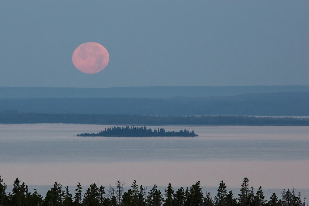 A summer moon sets over Yellowstone Lake and Molly Island in Yellowstone National Park.