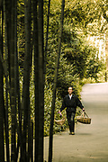 Countryman carrying bamboo baskets on the road through bamboo forest