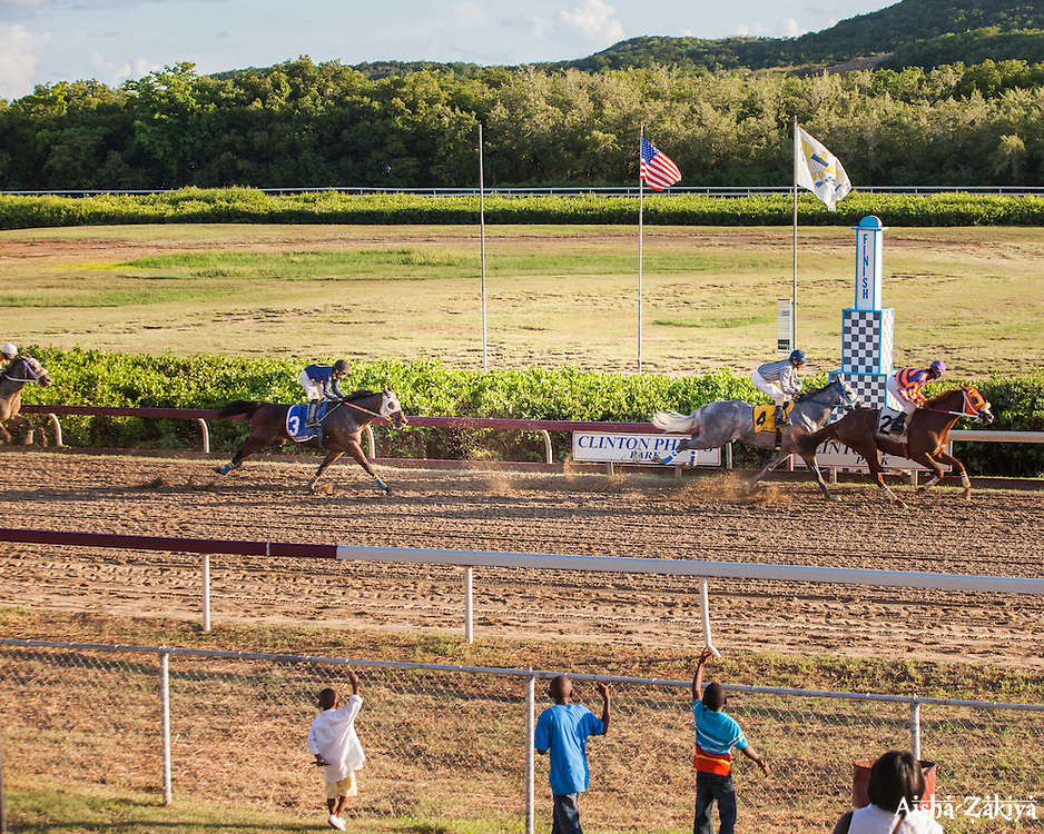 Scripture N Verse wins Race 5.  Horse Racing at Clinton Phipps Race Track.  St. Thomas, USVI.  18 October 2015.  © Aisha-Zakiya Boyd