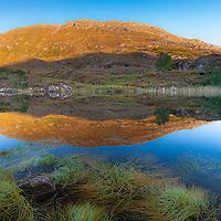 Killarney National Park, Ring of Kerry | Ireland, kl022